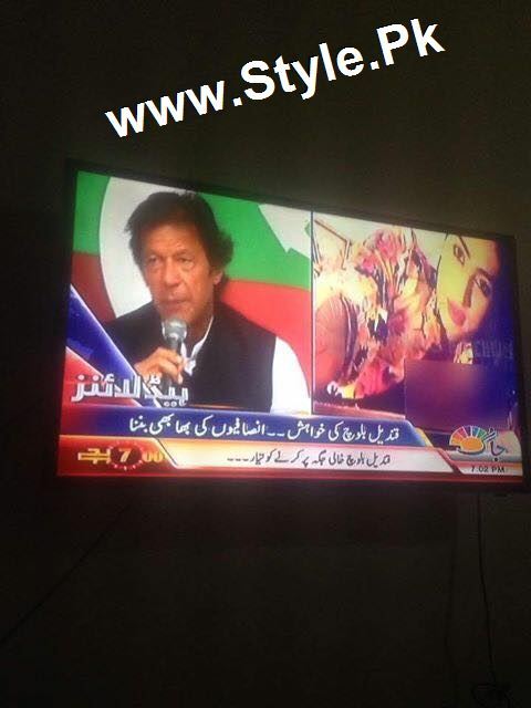 Supermodel Qandeel Baloch Proposed Imran Khan (4)