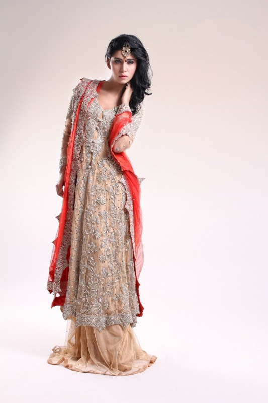 Pakistani Dresses for Girls