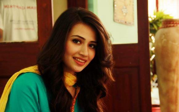 Sofia ahmed pakistani actress expose part 1 - 3 5
