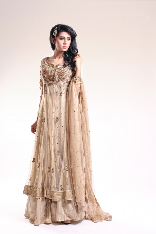 Most beautiful pakistani wedding dresses for girls for Wedding dresses for young girls