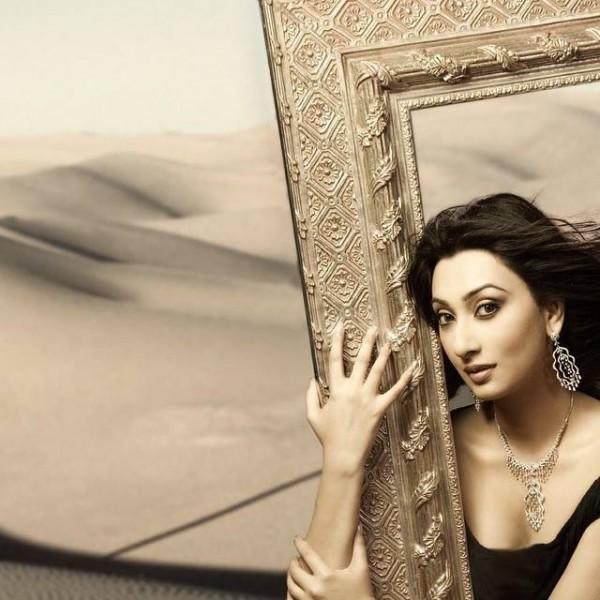 Pakistani Celebrities endorsing Afzal Jewelers (6)