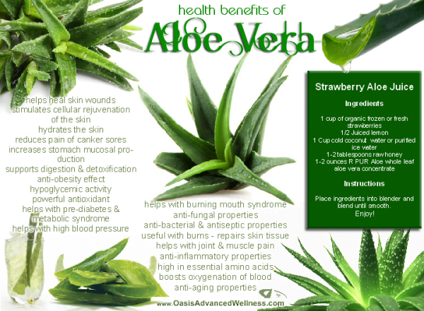 aloe-vera-health-benefits