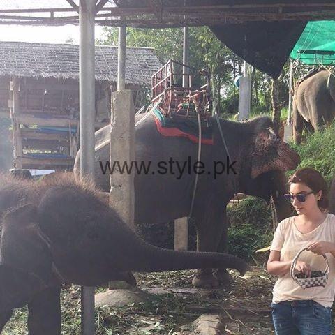 See Ayesha Khan in Thailand