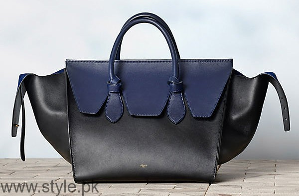 2017 Handbags Trends Winter Handbags (5)