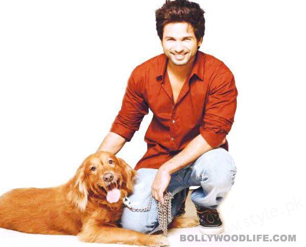 Pictures Of Bollywood Celebrities And Their Pets0011