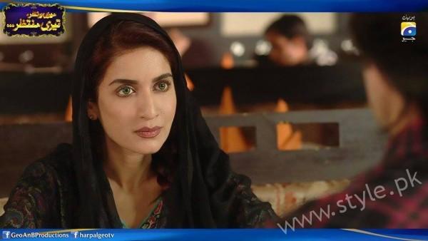 Saman Ansari's Profile, Pictures and Dramas (13)