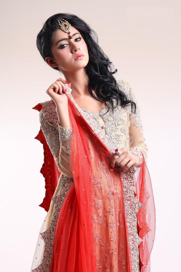 Pakistani Traditional Wedding Dresses 42 Superb All the girl who