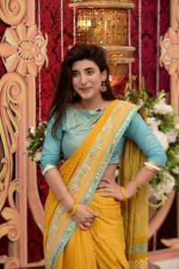 Pictures of cast of Punjab Nahi Jaongi at Eid special Show